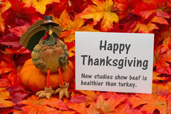 Funny Happy Thanksgiving Greeting. Funny Happy Thanksgiving  Greeting , Some fall leaves and a turkey sitting on a pumpkin and a greeting card with text Happy Royalty Free Stock Images
