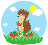 Funny hedgehog. Breakfast funny hedgehog on glade.illustration Royalty Free Stock Photo