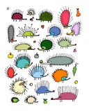 Funny hedgehog collection, sketch for your design Stock Photography