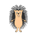 Funny hedgehog sketch in color. Funny hedgehog sketch drawing, isolated on white background, in color Royalty Free Stock Photo