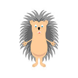 Funny hedgehog sketch in color 2. Funny hedgehog sketch drawing, isolated on white background, in color Stock Photo