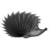 A funny hedgehog Stock Image