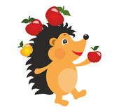 Funny hedgehog. On white background Royalty Free Stock Photography