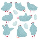 Funny Hen Poses and Eggs Collection Royalty Free Stock Images