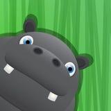 Funny hippo avatar icon Royalty Free Stock Photos