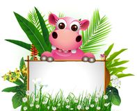 Funny hippo with blank sign Royalty Free Stock Photos
