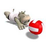Funny hippo plays volleyball Stock Photos