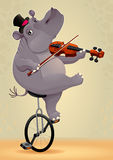 Funny hippo on an unicycle Royalty Free Stock Photography