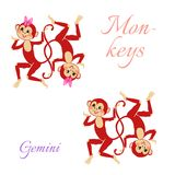 Funny horoscope with cute monkeys. Zodiac signs. Gemini. Stock Photos