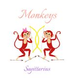 Funny horoscope with cute monkeys. Zodiac signs. Sagittarius. Royalty Free Stock Photography
