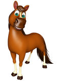 Funny Horse cartoon character Royalty Free Stock Images