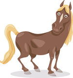 Funny horse cartoon illustration Royalty Free Stock Images