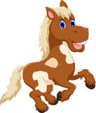 Funny horse cartoon jumping Royalty Free Stock Photography
