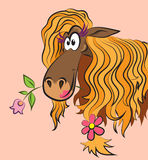 Funny horse with a flower. In her mouth Stock Photos
