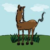 Funny horse sketch Royalty Free Stock Photography