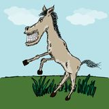 Funny horse sketch Royalty Free Stock Photo
