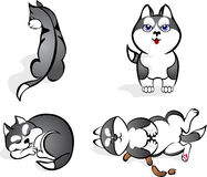 Funny Huskies. Vector illustration dog funny Huskies Royalty Free Stock Photo