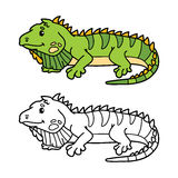 Funny iguana. Vector illustration coloring page of happy cartoon iguana for children, coloring and scrap book vector illustration