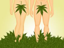 Adam and Eve in the Eden withe marijuana leaf. Funny illustration of Adam and Eve in the Eden withe marijuana leaf Royalty Free Stock Image