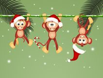 Monkeys on liana at Christmas. Funny illustration of monkeys on liana at Christmas vector illustration