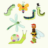Funny insect. Funny bee, caterpillar with other insect vector illustration