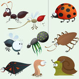 Funny insect set Royalty Free Stock Image