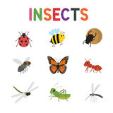 Funny insects, cute cartoon bugs vector set. Colored insects bee butterfly and ladybird,. Collection of cute insects Stock Image