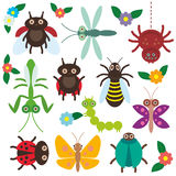 Funny insects set Spider butterfly caterpillar Stock Photography