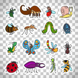 Funny insects stickers on transparent background. Vector funny insects and cute bugs stickers set isolated on transparent background Stock Images