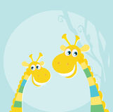 Funny jungle yellow giraffes Royalty Free Stock Photo