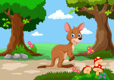 Funny kangaroo with a background of a beautiful garden Stock Images