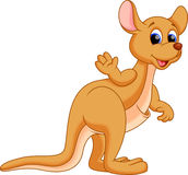 Funny kangaroo cartoon stock illustration