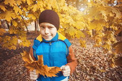 Funny kid on a background of autumn trees royalty free stock photos