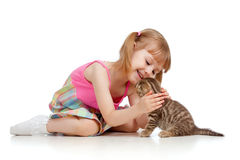 Funny kid playing with Scottish kitten Stock Photography