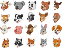Funny kids animals Stock Photos