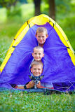 Funny kids and dog looking out from tent Stock Image