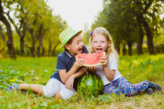 Funny kids taste watermelon. Child Healthy Eating Stock Image