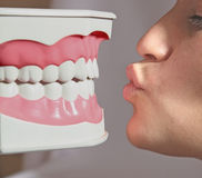 Funny kiss. Of plastic teeth model and woman - background on dental theme royalty free stock photo