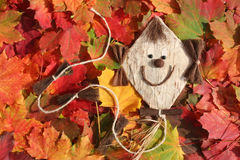 Funny kite and autumn leaves. Funny kite and colorful maple leaves in autumn Royalty Free Stock Image