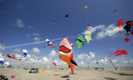 Funny kites in the air Stock Image