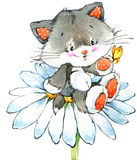 Funny kitten. element for holiday greetings card and kids background. watercolor Stock Image