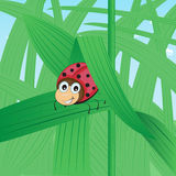 Funny ladybird in the grass royalty free illustration