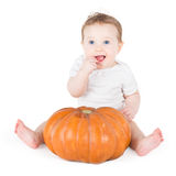 Funny laughing baby girl playing with huge pumpkin. Funny laughing baby girl playing with a huge pumpkin on white background Royalty Free Stock Image