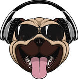 Funny laughing pug. vector illustration