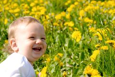 Funny Laughing Toddler Portrait Stock Images