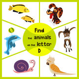 Funny learning maze game, find all 3 cute animals with the letter D, a Dolphin, a dog and a donkey. Educational page for children. Vector illustration Royalty Free Stock Photos