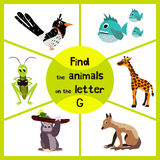 Funny learning maze game, find all 3 cute wild animals with the letter G, tropical gorilla, giraffe from Savannah and grasshopper. Insect. Educational page for Stock Photos