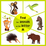 Funny learning maze game, find all 3 cute wild animals with the letter M, field mouse, macaque monkey tropical and insect-eating m. Ole. Educational page for Stock Photography