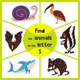 Funny learning maze game, find all 3 cute wild animals with the letter S, forest skunk, shark predatory sea slug and the snail. Ed Royalty Free Stock Photos