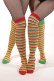 Funny legs. Legs of two young woman in funny stockings Royalty Free Stock Photo